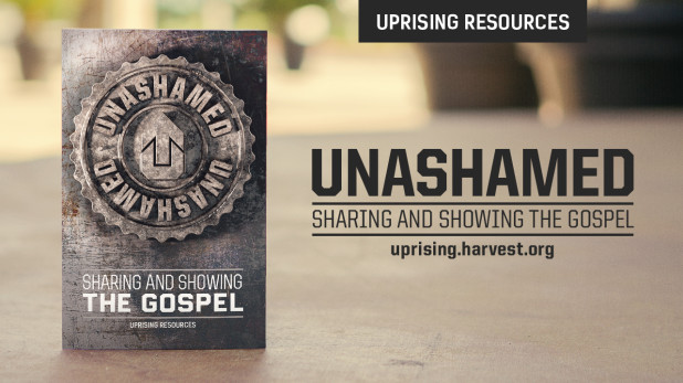 Unashamed_book